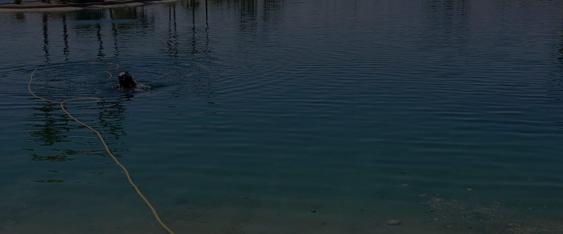 Lake Cleaning